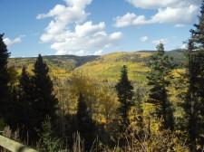 Beaver Meadows Overlook